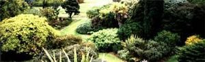 Noel Beaucote -   - Landscaped Garden