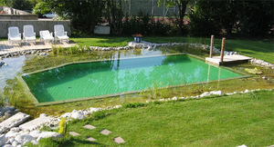 BIOTEICH -  - Conventional Pool