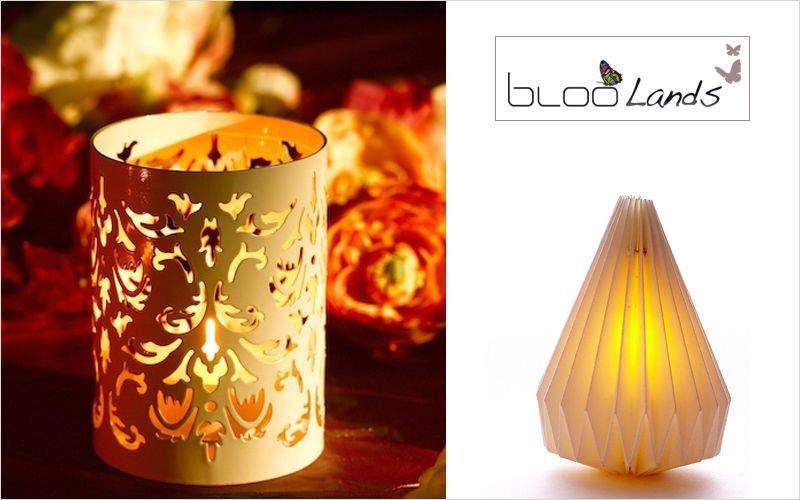 BLOOLANDS Windlicht Kerzen und Kerzenständer Dekorative Gegenstände   
