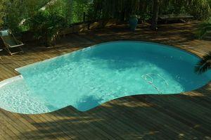 Silver Pool -  - Traditioneller Swimmingpool