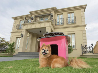 ALVARAE -  - Hundehütte