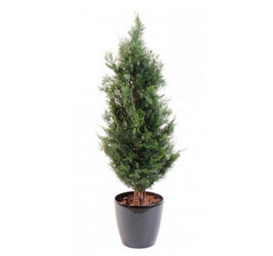 FLORE EVENTS - cypres - Künstlicher Baum