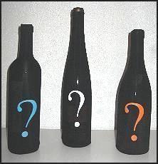 SOMMELIER ON LINE -  - Flaschenhülle