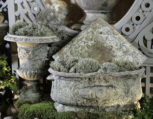 Ampholia-Anduze -  - Blumenkasten