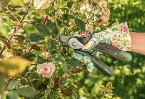 Bosch Outillage - easyprune-- - Gartenschere