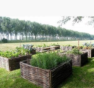 FOREST AVENUE -  - Gartenkasten