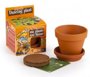 Radis Et Capucine - l'incroyable plante qui danse à faire pousser - Zimmergarten
