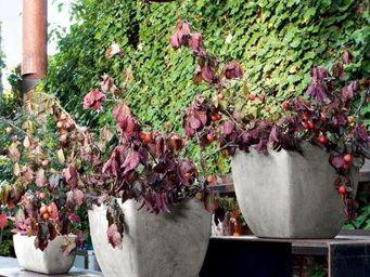 DEROMA France - oll - Blumenkübel