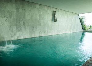 FRANZ SICCARDI -  - Innenswimmingpool
