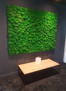 Vegetal  Indoor -  - Bepflanzte Wand
