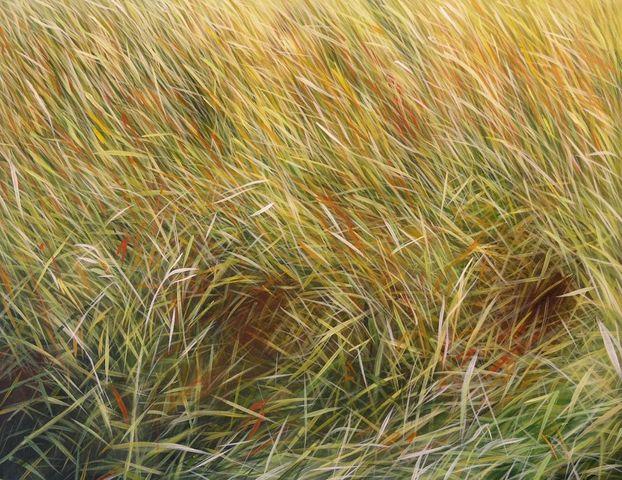 MANUEL CANCEL - Zeitgenössische Gemälde-MANUEL CANCEL-Herbias