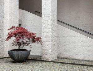 DOMANI - half-bowl - Maceta Para Árbol