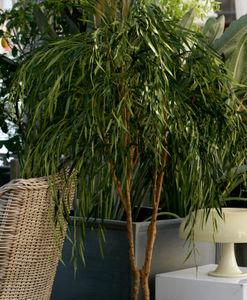 Euroflor -  - Planta Artificial