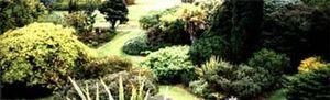 Noel Beaucote -   - Jardín Paisajístico
