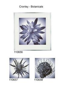 Artefact - cronley - botanicals - Fotografía