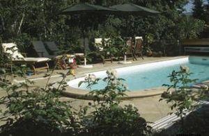 Marbrerie Des Yvelines -  - Pavimentazione Zona Piscina