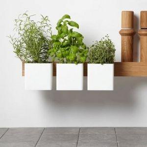 Gejst - flex blanc - Giardino Per Interni