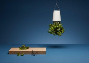 BOSKKE - sky planter -
