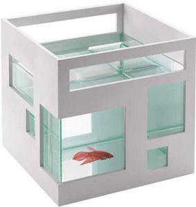 Umbra - aquarium blanc design hôtel 19x19x20cm - Acquario